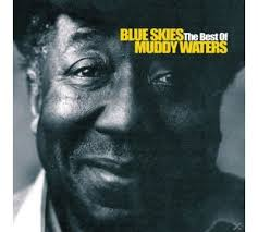 Muddy Waters - Blue Skies - The Best of  płyta CD