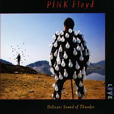 PINK FLOYD DELICATE SOUND OF THUNDER VINYL ALBUM